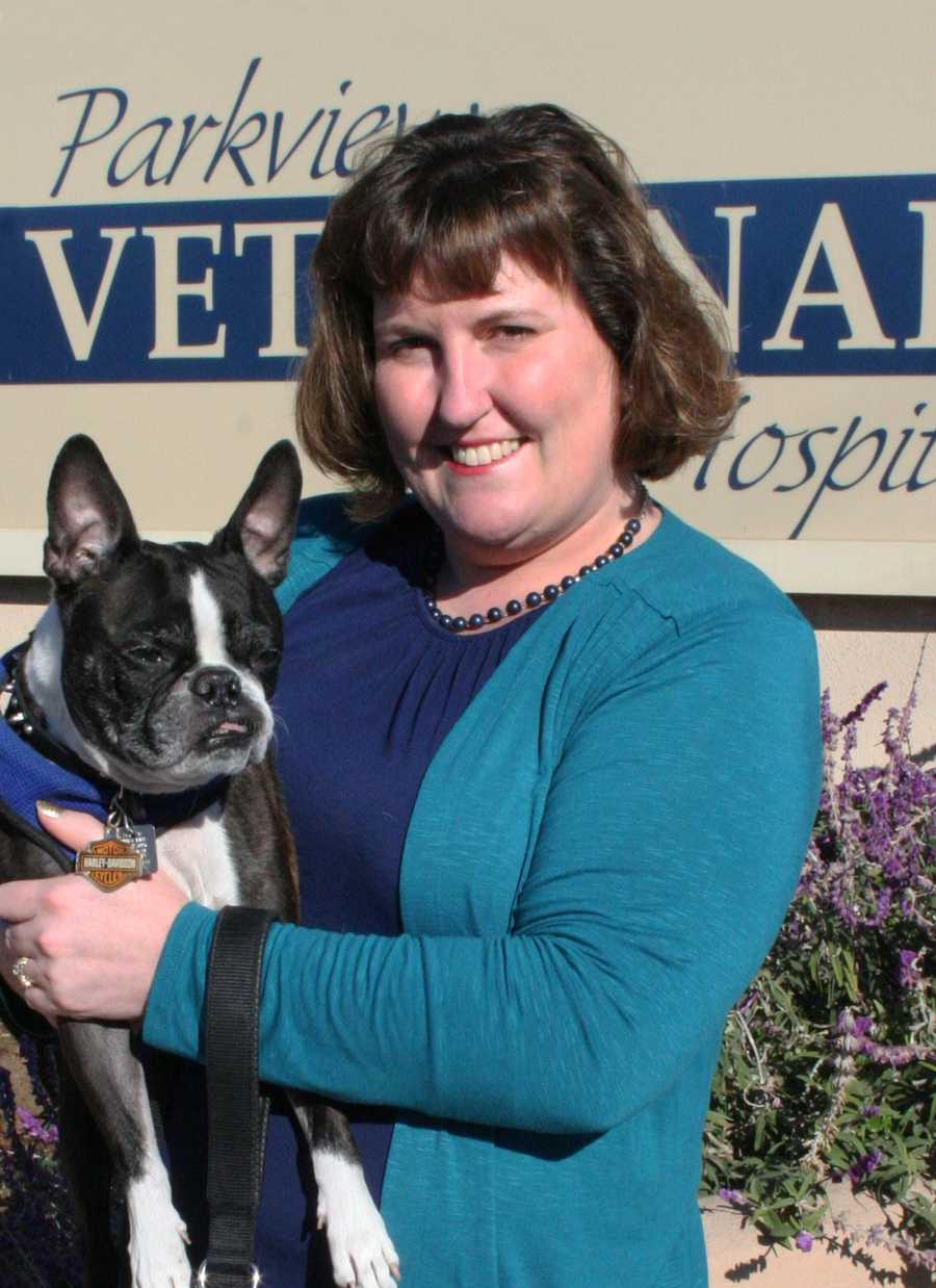 """Best Woman-Owned Business – Parkview Veterinary Hospital – Cynthia Nichols, D.V.M.Dr. Cynthia Nichols grew up on the Central Coast in King City. She completed her undergraduate degree at UC Santa Cruz, majoring in Marine Biology. She graduated from UC Davis in 2000, focusing on small animals and exotics. Dr. Nichols purchased Parkview Veterinary Hospital in 2006 where she has provided """"Compassionate Care with a Modern Approach"""" to her clients and patients. In July, 2012, she added a second full time doctor. She recently expanded the facility to include an on-site doggy daycare facility, Yippee!, which opened in October, 2013. Parkview Veterinary Hospital is a member of the Carmel Chamber of Commerce. Community involvement is a priority for Dr. Nichols. She is a supporter of animal organizations, including Animal Friends Rescue Project, Peace of Mind Dog Rescue and is a foundation board member of The Birchbark Foundation. She most recently became a community partner with Pawsitive Service Dog Solutions. She trains and places service dogs with individuals with Autism."""