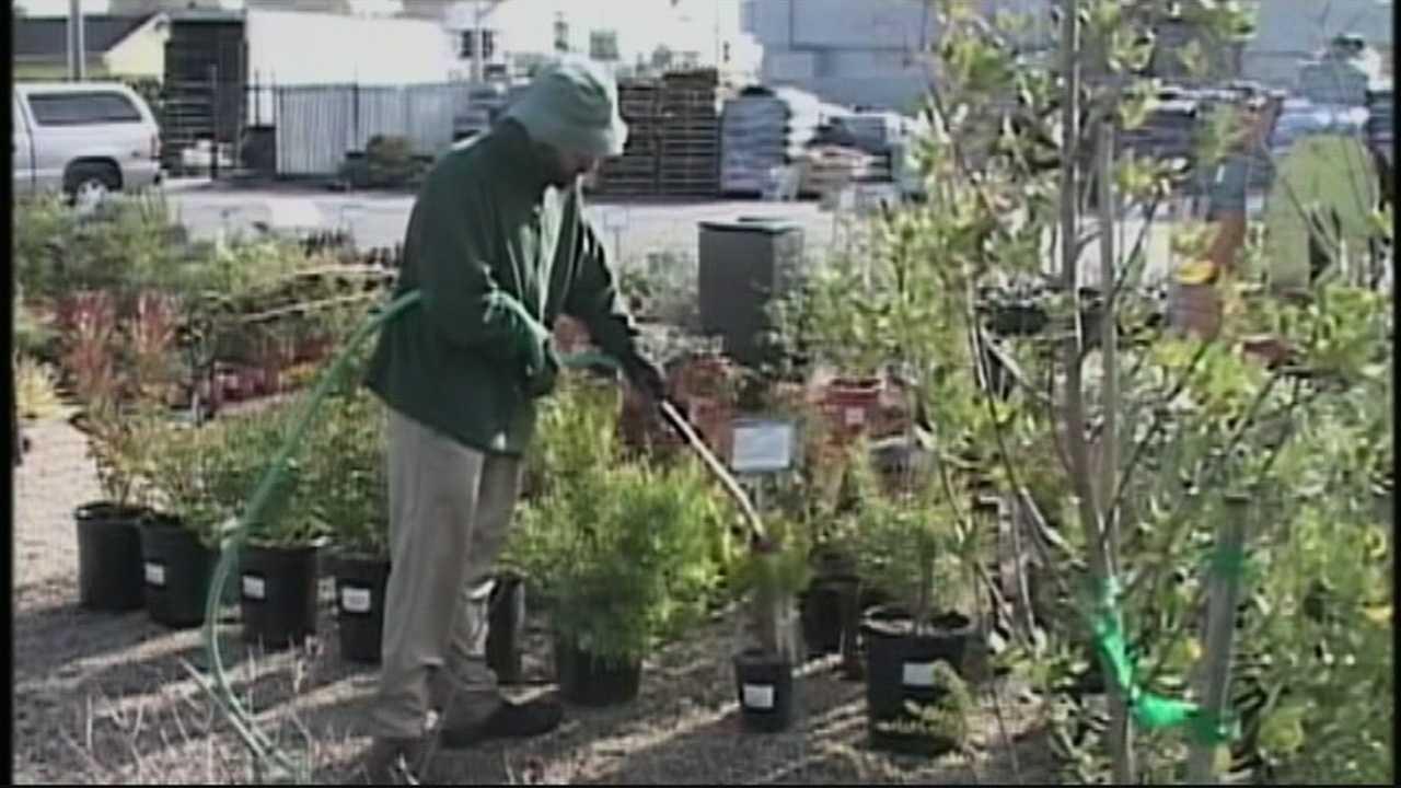 Santa Cruz considering water limits on landscaping