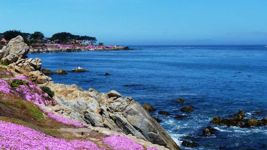 Woman Rescued Off Pacific Grove Point After Spending Night On Dinghy