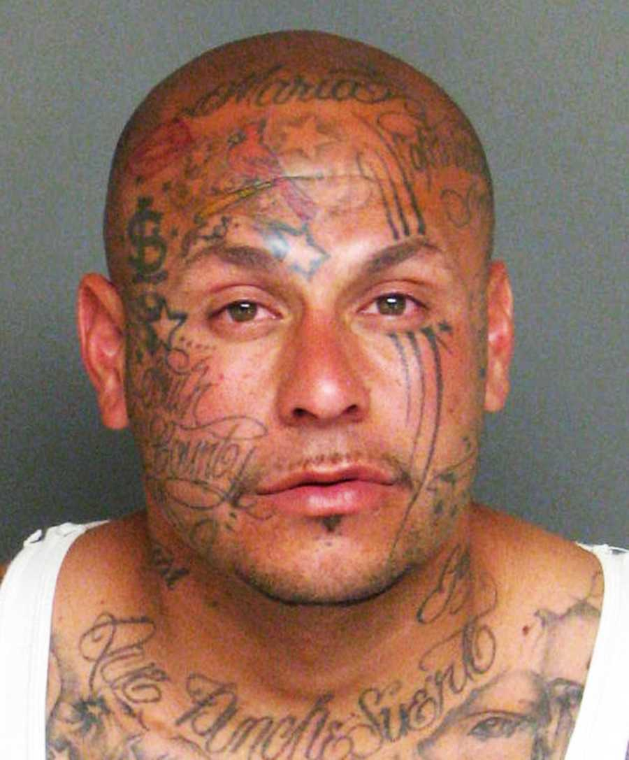 "Jose Tinajero was arrested March 17, 2014 after a high speed chase with police in Greenfield. His tattoos include ""South County"" written on his cheek. He was charged with evading a peace officer, being a felon in possession of a loaded gun, and violating parole."