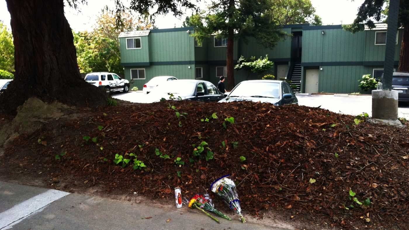 Flowers were left where a woman was stabbed in Capitola Saturday.