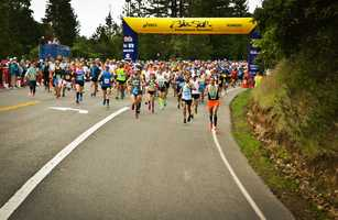 Elite runners take off from the starting line of the Big Sur International Marathon 2014.