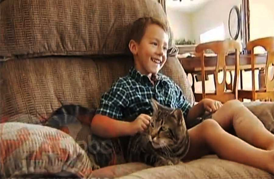 A cat charged to her best friend's rescue Tuesday when a 4-year-old boy was attacked outside his house in Bakersfield, Calif. The incredible story of the cat's heroics would be hard to believe, except it was all recorded on surveillance video.