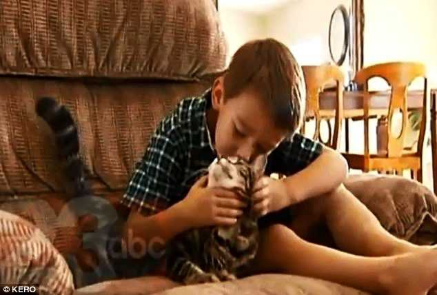 """The boy's horrified mother had been watering a tree nearby. She took him to a hospital and Jeremyreceived stitches in his leg. The boy was doing OK on Wednesday and told a 23ABC reporter, """"Tara is my hero."""""""