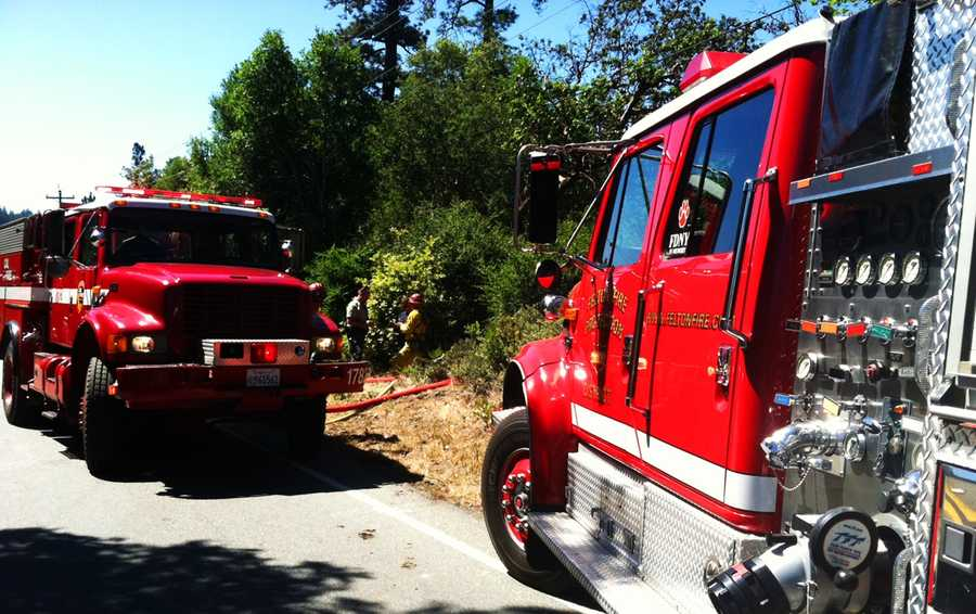 The wildfire burned 50 by 50 feet of land in Henry Cowell Redwoods State Park. (May 27, 2014)