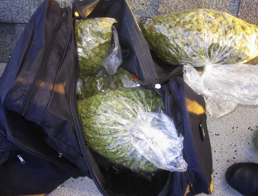 Police opened the hotel room's door and found more than 17 pounds of marijuana.