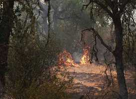 Firefighters said the wildfire was caused by soldiers who were firing live rounds of ammunition from helicopters.