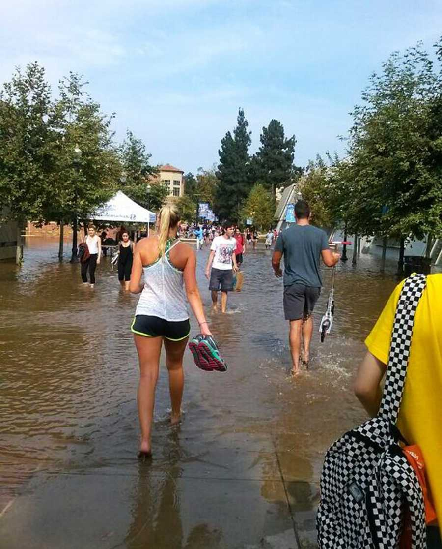 """""""Unfortunately UCLA was the sink for this water source,"""" UCLA Chancellor Gene Block said."""