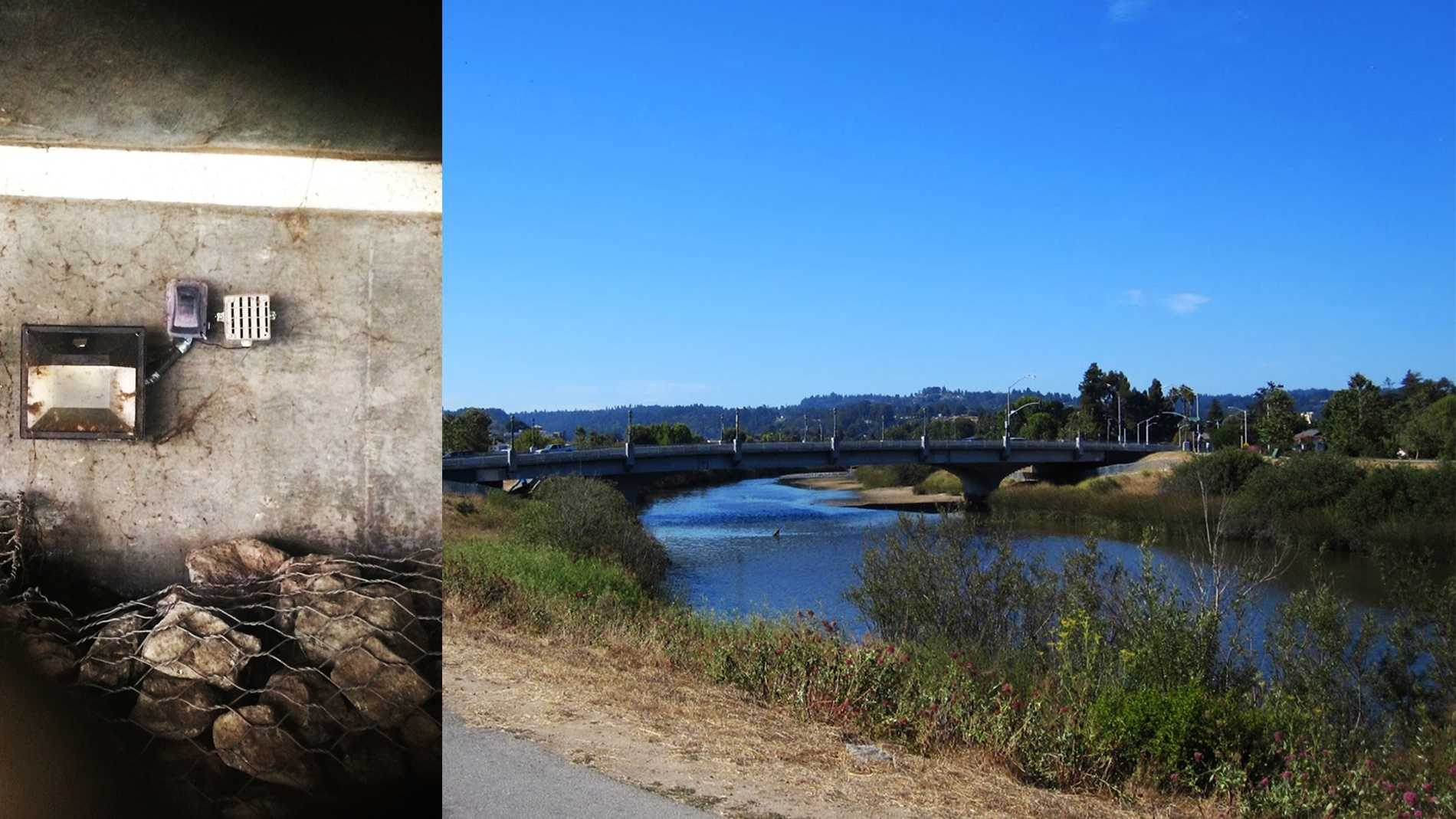 Boxes called The Mosquito, left, were planted along the San Lorenzo River levee in downtown Santa Cruz.