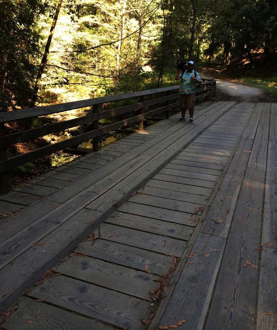 Margaret's Bridge over Aptos Creek is one of several bridges on the trail.