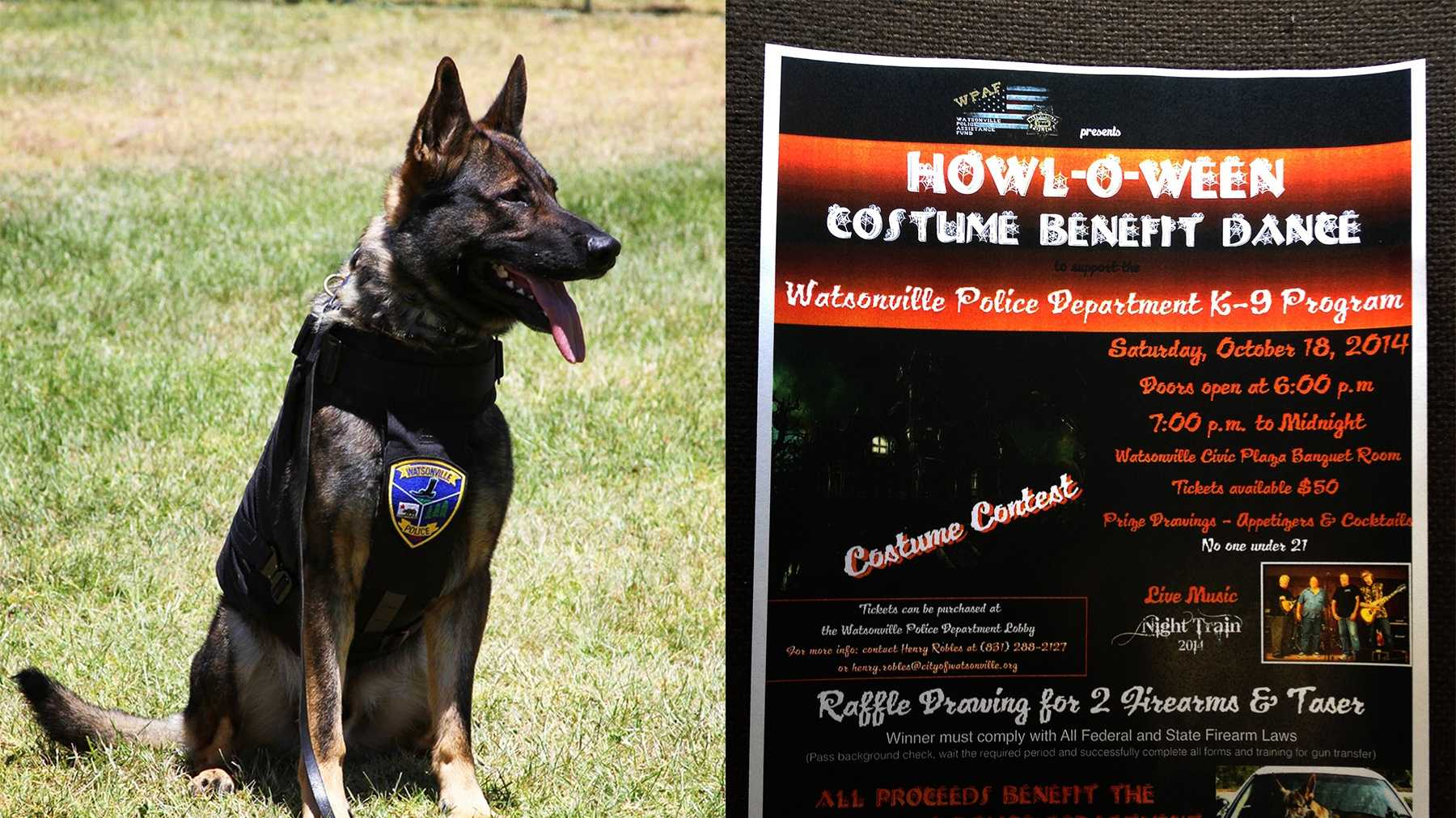 The Watsonville police force's K-9 is named Ellix, left. A flier, right, advertises a dance party to raise money for a second police K-9.