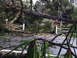 """CalFire issued a """"falling tree hazard"""" warning for Pebble Beach and alerted Pebble Beach residents that PG&E would not enter the area until after the storm was over."""