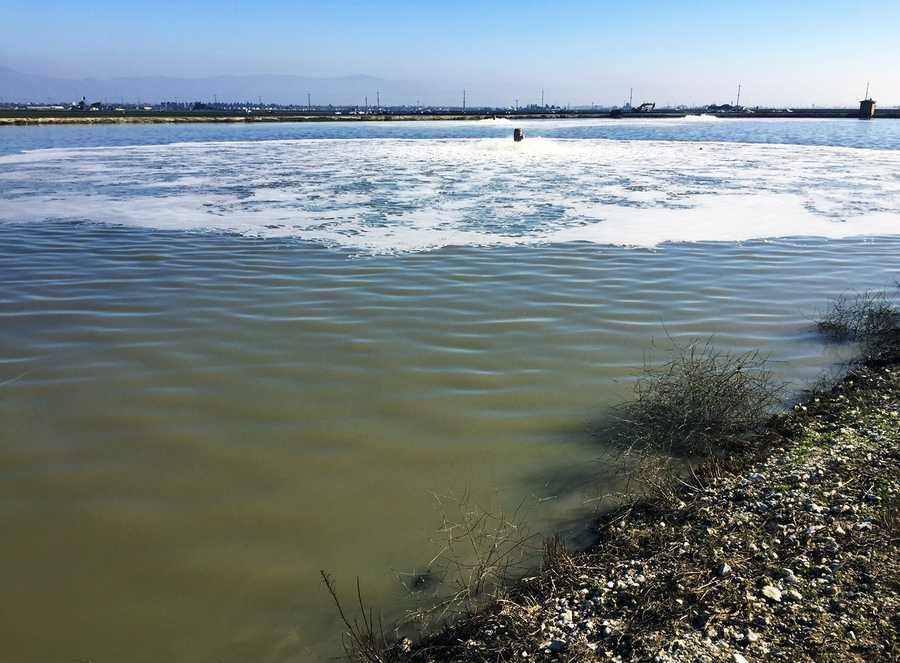 Industrial-sized sludge ponds are located adjacent to the Salinas River on the south west corner of Salinas, along Davis Road, Reservation Road, Blanco Road. They are used to take in agricultural farms' waste water and aerate it.