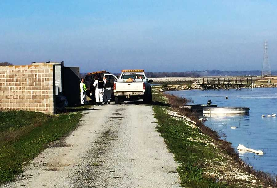 The ponds completely dried out.After December's rainstorms, city crews restarted water flows into the sludge ponds.