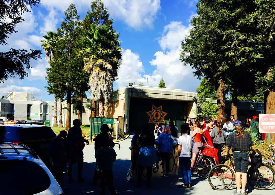 A dozen protesters unsuccessfully attempted to block Santa Cruz County Jail entrances on Tuesday after police arrested the six students.