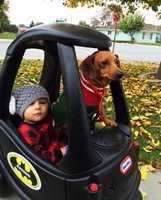 Batman and Robin patrol Hollister. / December 2014