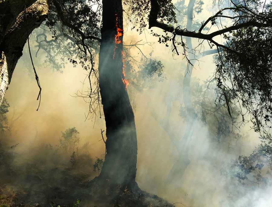 Some structures were threatened, CalFire firefighters said, but the blaze was not close enough to require evacuations.