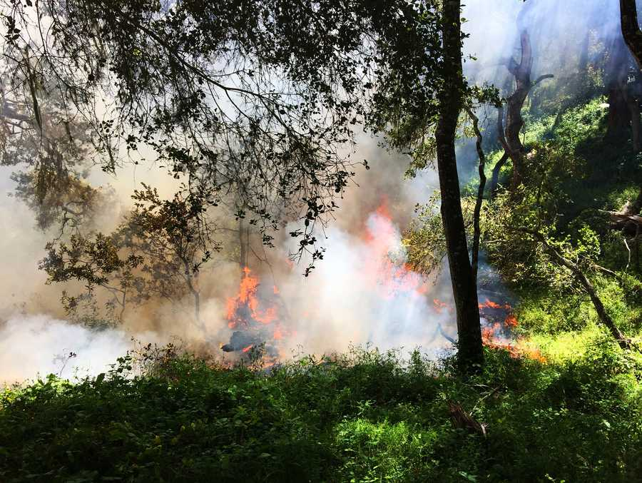 A wildfire in the hills above Monterey was 100 percent contained as of 2:45 p.m. Wednesday.