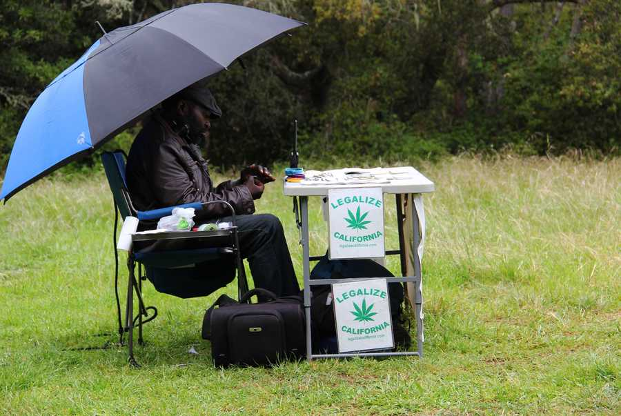This man set up a small table with California marijuana legalization information pamphlets.