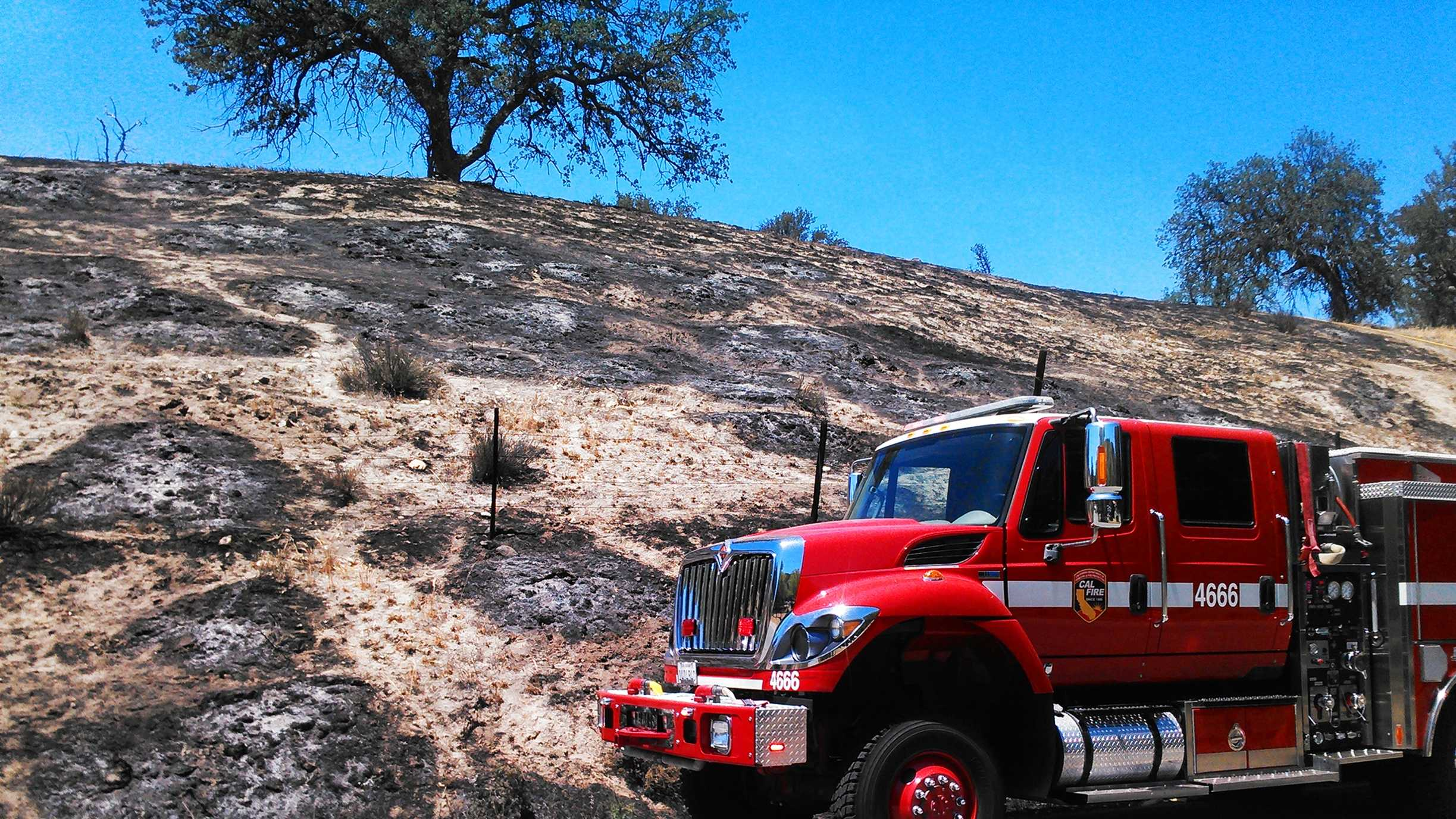 Ten acres were scorched in Pinnacles National Park by a wildfire. (May 12, 2015)