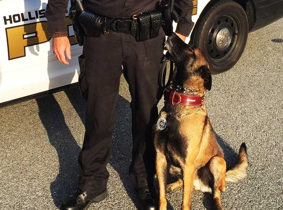 The Hollister Police Department's newest crime fighter can sniff out clues and make a running suspect freeze. Freeze is a 4-year-old Belgian Malinois andhighly trained K9.