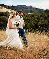 KSBW News Anchor Brittany Nielsen married Ryan Laughton in a magical looking redwood tree grove east of Watsonville last weekend!