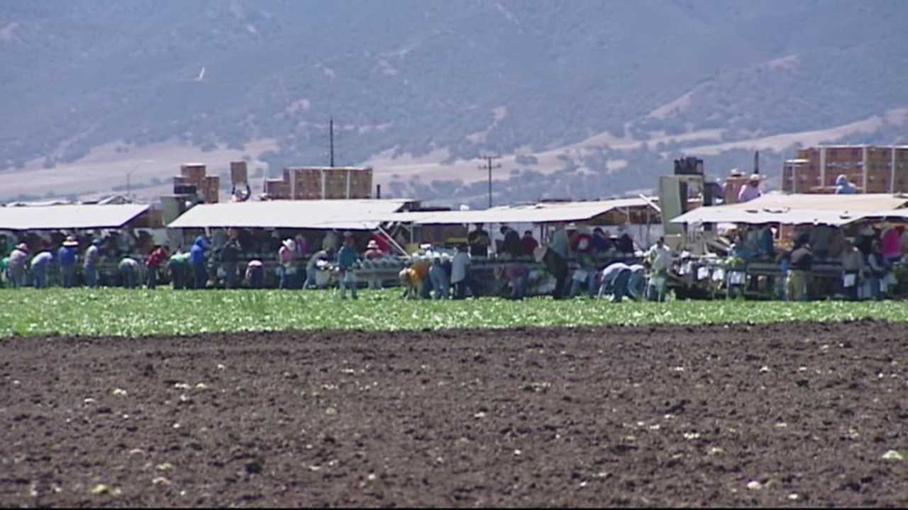 Salinas Valley and Silicon Valley merging for ag-tech summit