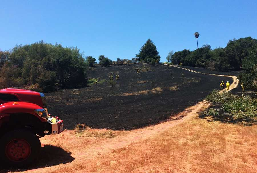 Santa Cruz police officers and firefighters determined the fire was not caused by a campfire or fireworks, Division Fire Chief Mark Ramos said. They believe an arsonist sparked the flames, he said.