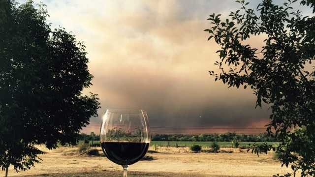 """A wind-fueled grass fire that broke out Wednesday near Lake Berryessa forced mandatory evacuations and caused a """"storm cloud of smoke"""" to cover parts of Yolo and Napa counties.(July 22, 2015)"""