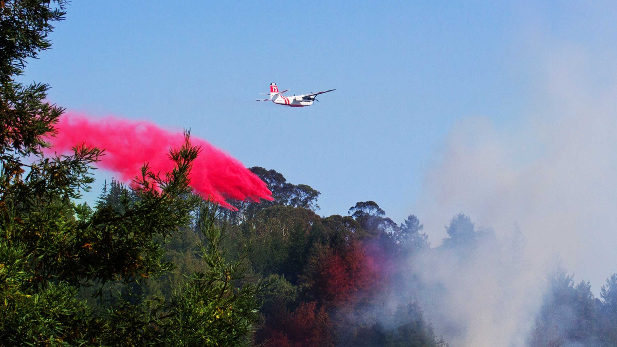 A small wildfire in Scotts Valley was quickly doused by CalFire on July 30, 2015.