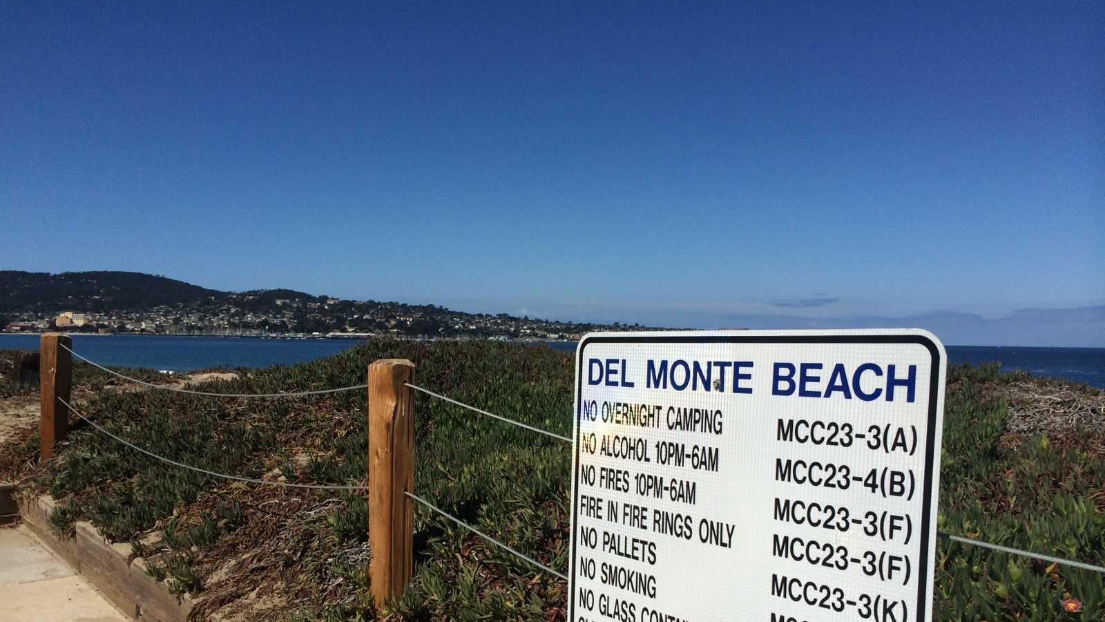 beach fire rules.jpg