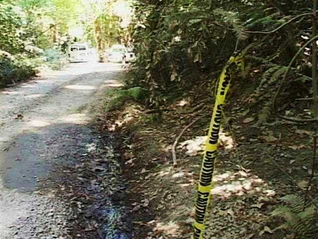 Veil's body was found here six days later by a woman who was walking her dog on Love Creek Road in Ben Lomond.
