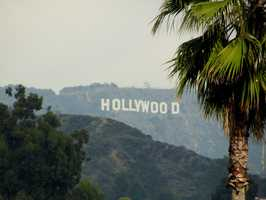 The letters in the Hollywood sign are each 45 feet tall, and from end to end they span a combined 350 feet.