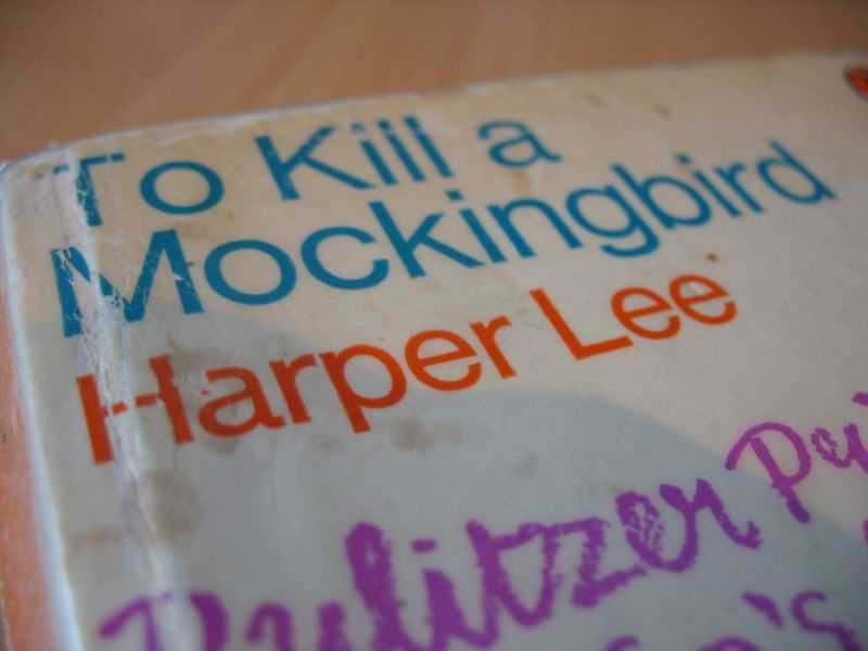 "To Kill a Mockingbird, Harper Lee, 1960For some educators, the Pulitzer-prize winning book is one of the greatest texts teens can study in an American literature class. Others have called it a degrading, profane and racist work that ""promotes white supremacy."" A local school district in Louisiana recently began enforcing a decade old ban on the book."