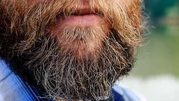 Pogonophobia is the fear of beards.