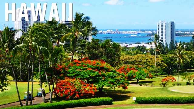Hawaii:Although there are 18 exceptions, billboards are banned in Hawaii and you will not see them regularly throughout the state. (Source: Business Insider)