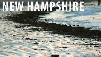New HampshireIf you're looking to collect seaweed, you will need to make sure you do it during the daylight because it is illegal to carry away or collect it at night. (Source: Business Insider)