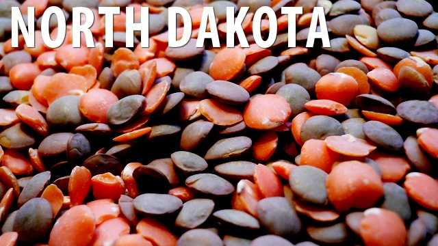 North Dakota:It is against the law for a person to become a member of the Dry Pea and Lentil Council unless they are a legal citizen of the country. The organization promotes the dry pea, lentil, chickpeas, and fava bean industries. (Source: Business Insider)