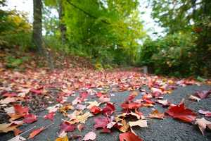 Is there anything quite as invigorating and refreshing than talking a walk in the crisp autumn weather? Whether exploring trails at the park or enjoying your own neighborhood, fall weather is perfect for taking a stroll.