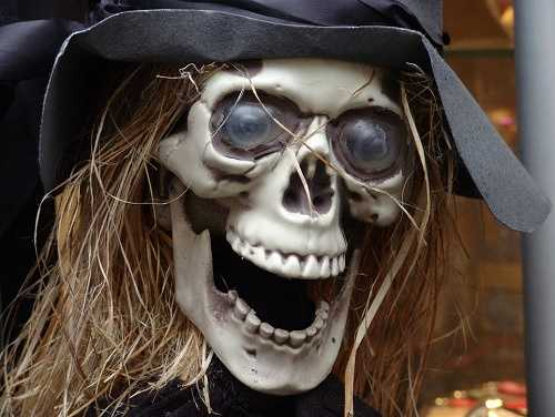 Ghosts, goblins and witches, oh my! When else can you drive around and see coffins and zombies in people's yards? 'Tis the season to string up the fake cobwebs, dust off the skeletons, give a pep talk to the old scarecrow and deck out your home and yard with your scariest stuff.