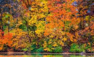 The spectacle of changing foliage in Fall nearly rivals fireworks on the 4th of July - well, at a much, much slower pace that is. As we all hurry about our busy lives, this is a great time of year to take a moment to stop, look and really take it all in. The changing colors in Autumn are really a beautiful sight to behold!