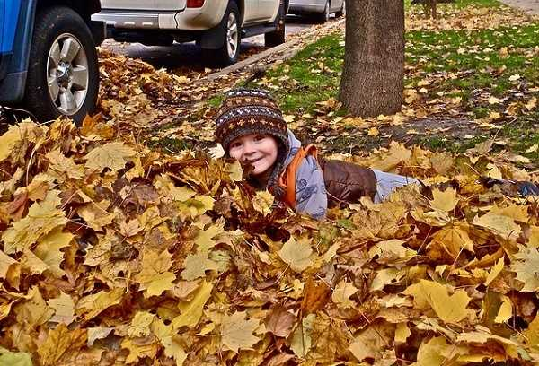 Crunch! Crackle! Playing in the leaves is definitely a Fall favorite for many. Even if you don't roll in them, just stepping on them can be fun! But raking them, now that's another story....