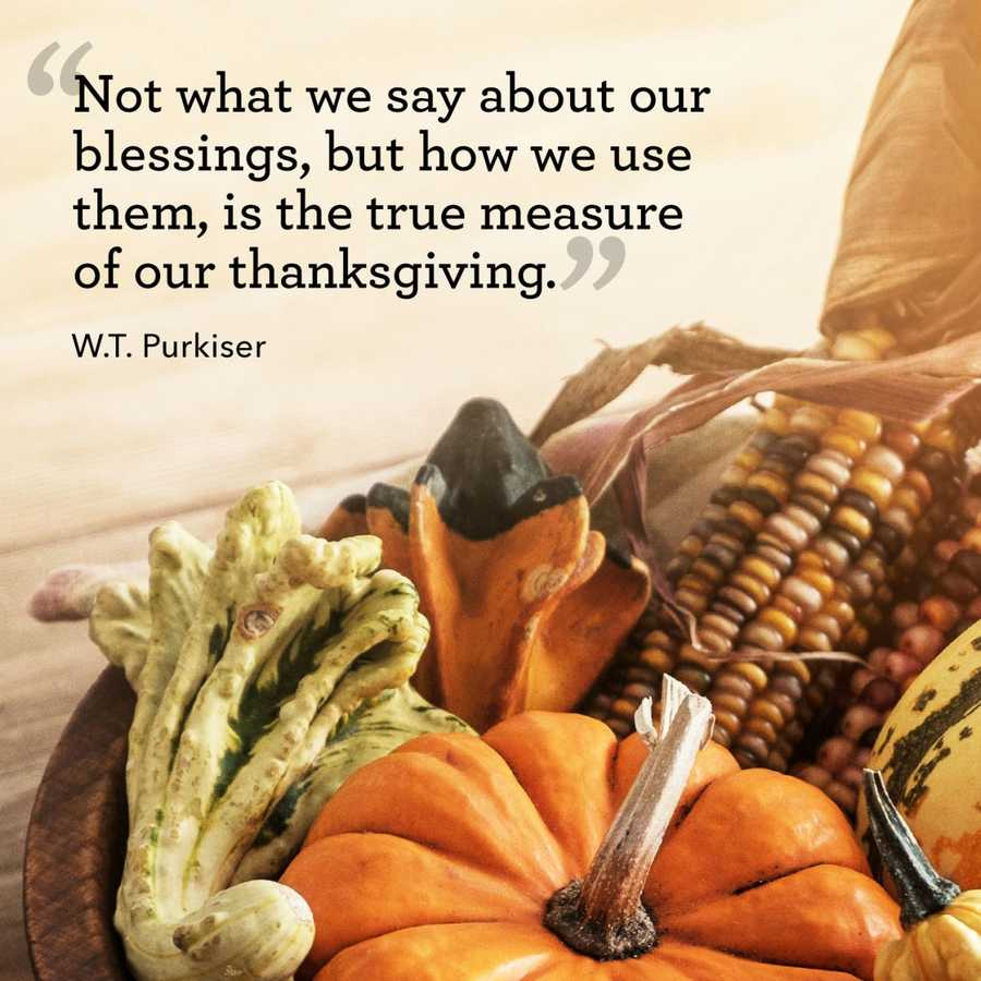 the meaning of thanksgiving Let us remember the true meaning of thanksgiving as we see the beauty of autumn, let us acknowledge the many blessings which are our.