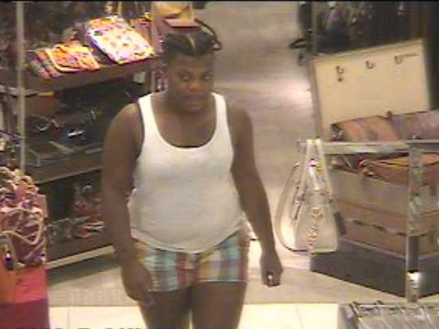 Ridgeland police have released surveillance photos of two women wanted in a shoplifting case.