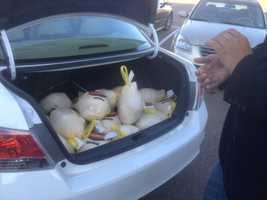 By 8 a.m., about 125 turkeys had been donated.
