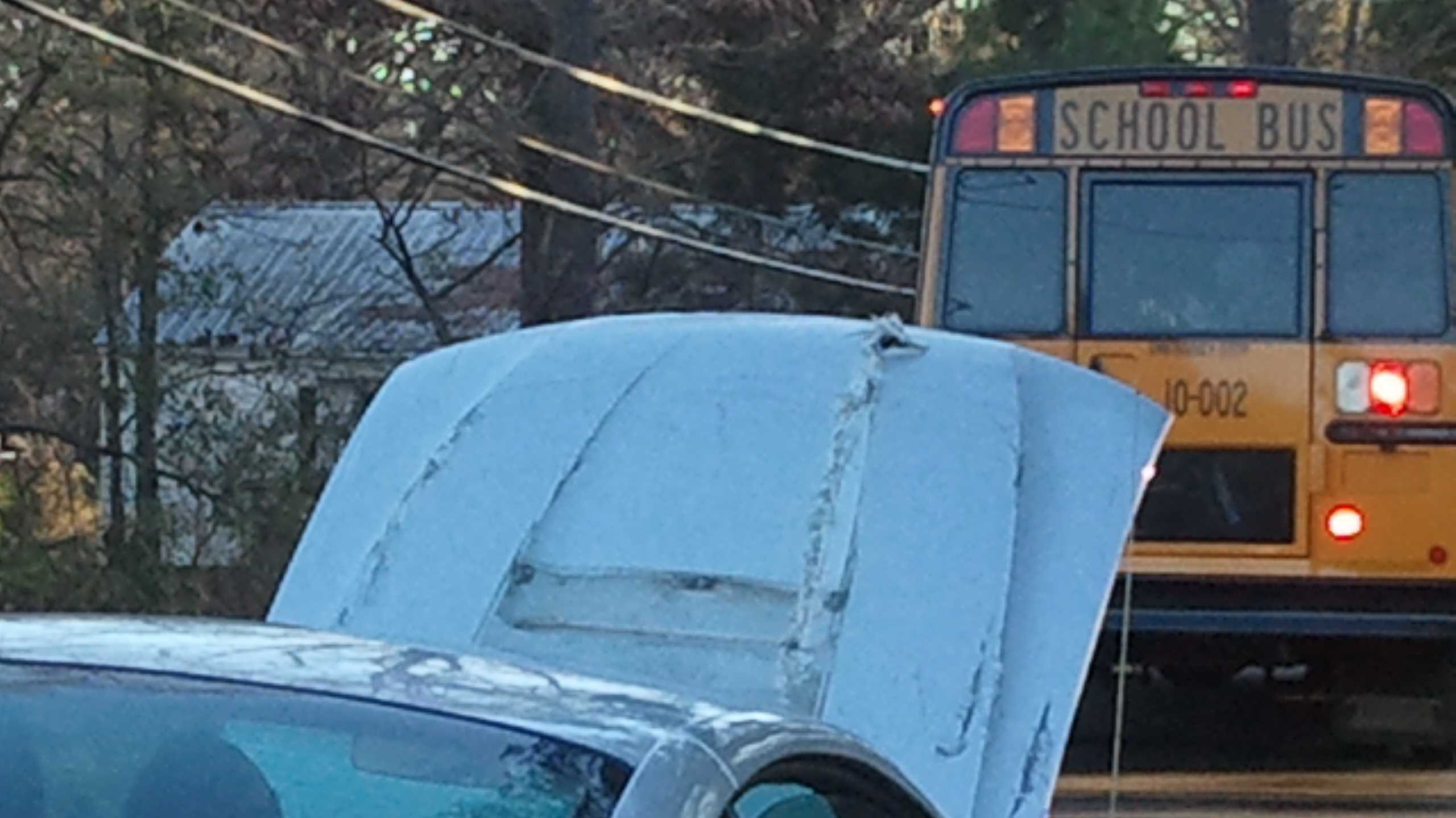 School bus ax gardenia 2