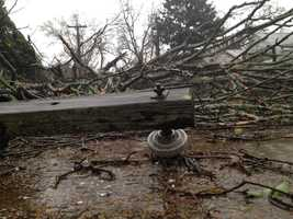 A tree fell on a house and car in Natchez on Thursday.