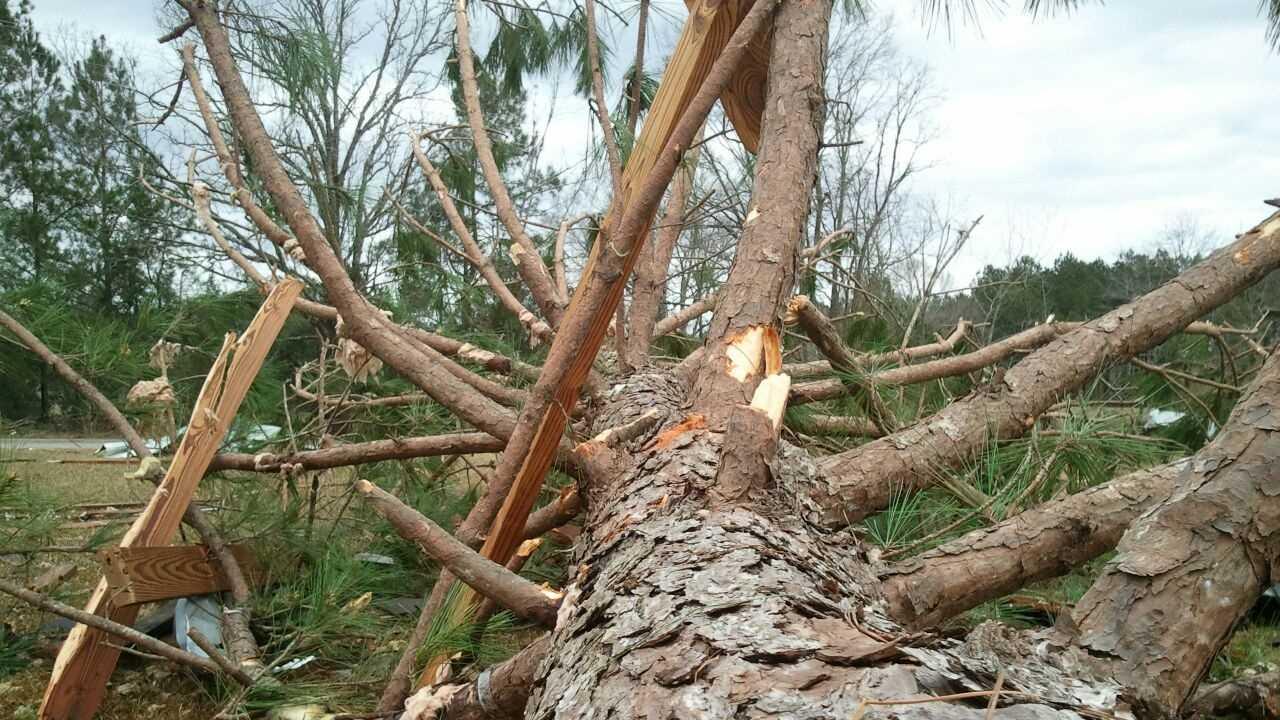 jeff davis tornado 23.jpg