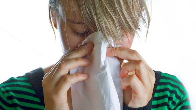 Allergy Sneeze Allergies