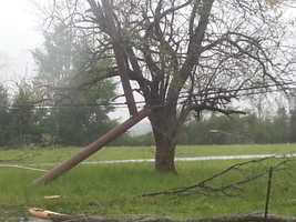Broken poles and trees down on Highway 14 east of Macon.